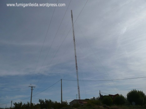 antena alta def